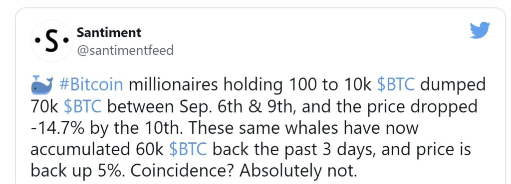 """""""Whales"""" accumulated $2.8 billion in bitcoins in three days"""